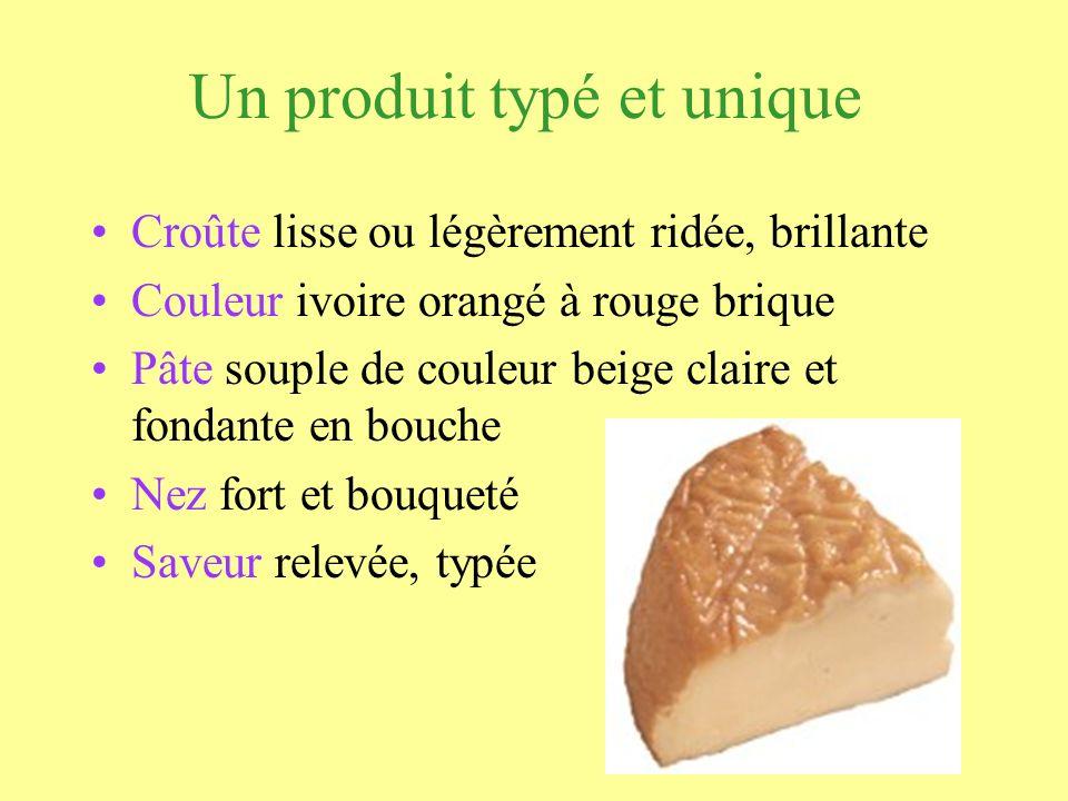 Un produit typé et unique Croûte lisse ou légèrement ridée, brillante Couleur ivoire orangé à rouge brique Pâte souple de couleur beige claire et fond