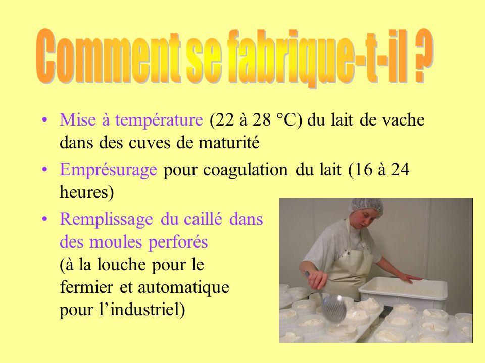 Mise à température (22 à 28 °C) du lait de vache dans des cuves de maturité Emprésurage pour coagulation du lait (16 à 24 heures) Remplissage du caill