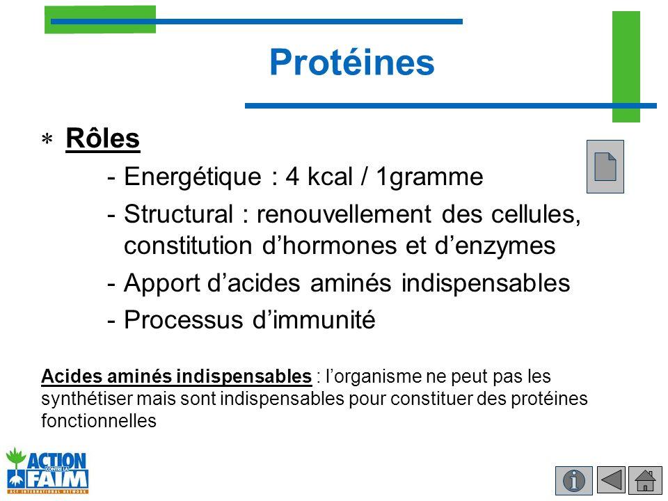 Protéines Rôles -Energétique : 4 kcal / 1gramme -Structural : renouvellement des cellules, constitution dhormones et denzymes -Apport dacides aminés i