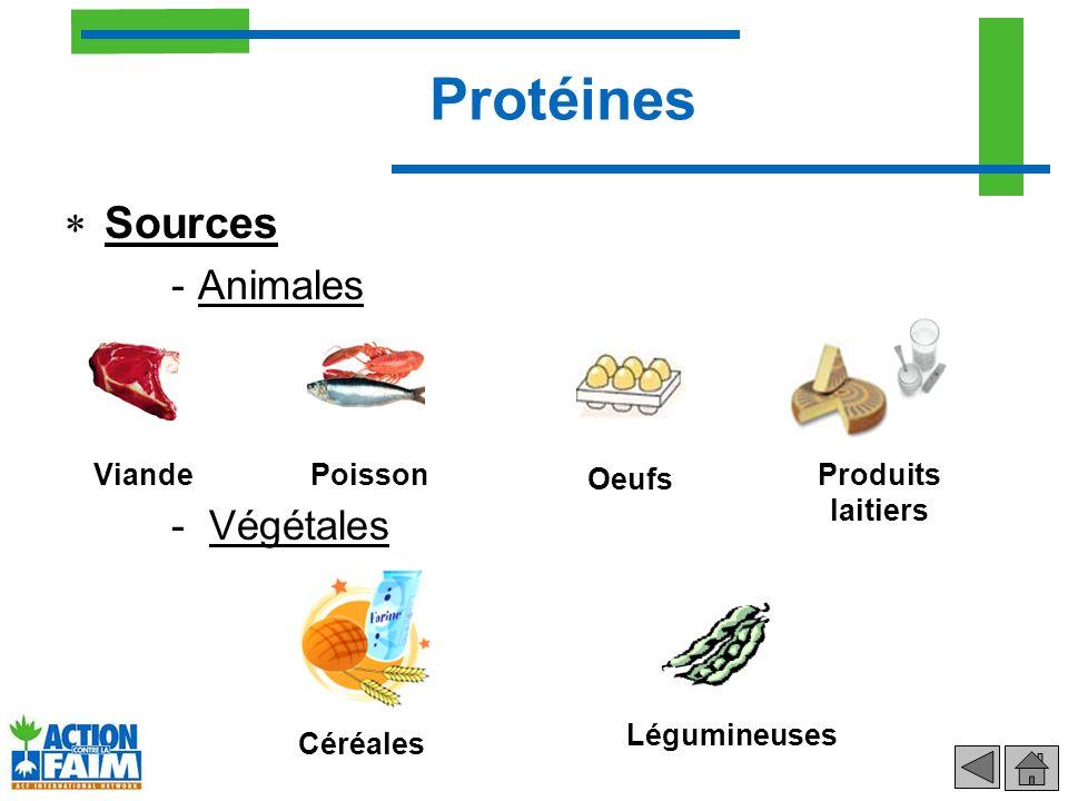Protéines Sources -Animales - Végétales ViandePoisson Oeufs Produits laitiers Céréales Légumineuses