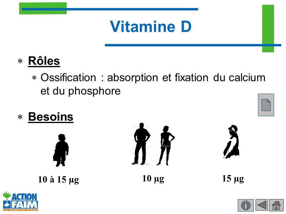 Vitamine D Rôles Ossification : absorption et fixation du calcium et du phosphore Besoins 10 à 15 µg 10 µg15 µg
