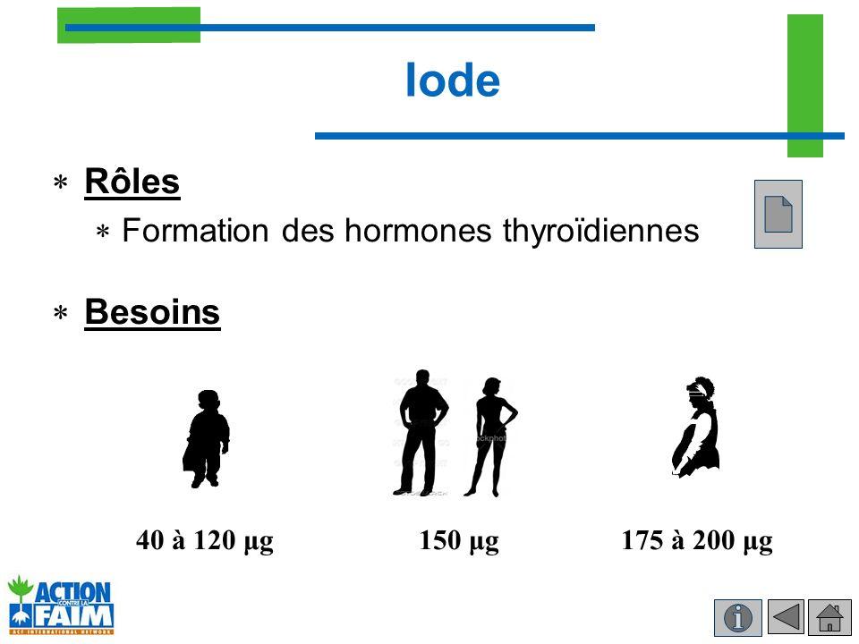 Iode Rôles Formation des hormones thyroïdiennes Besoins 40 à 120 μg150 μg175 à 200 μg