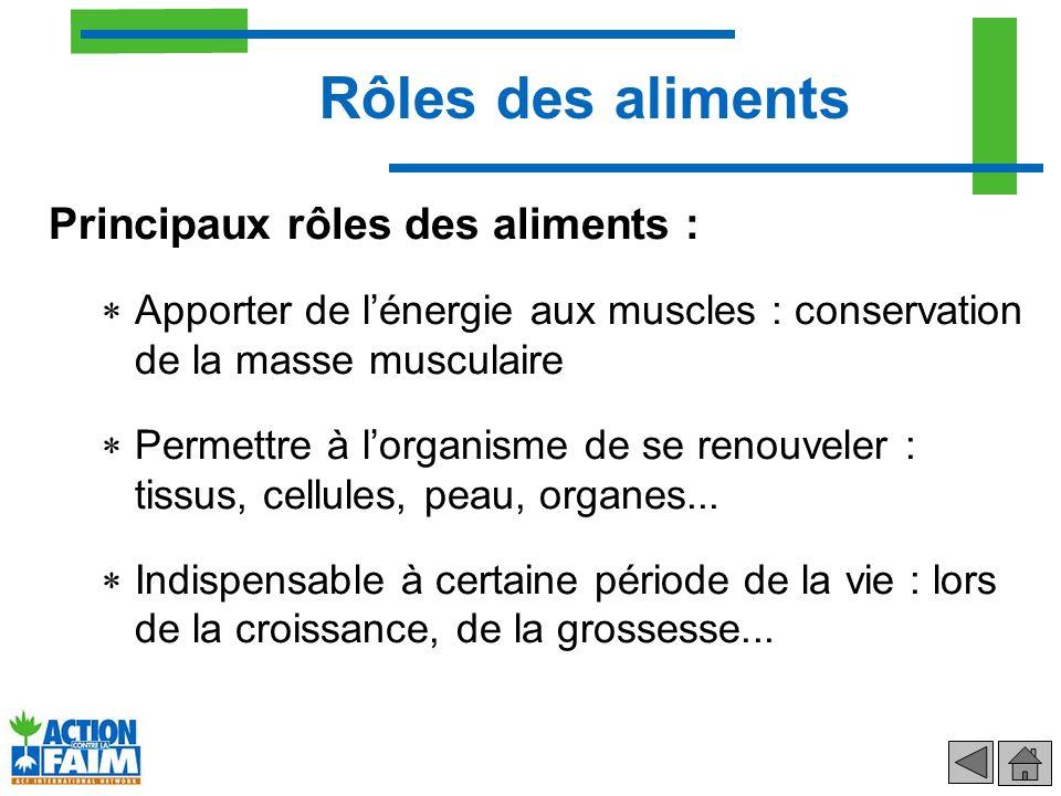 Principaux rôles des aliments : Apporter de lénergie aux muscles : conservation de la masse musculaire Permettre à lorganisme de se renouveler : tissu