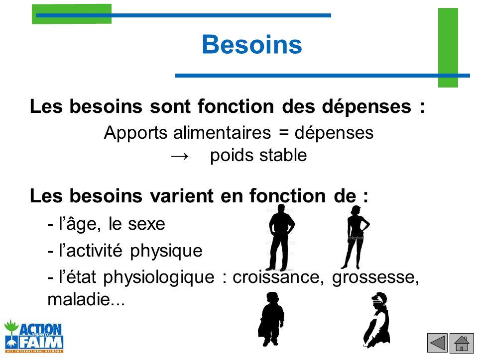 Besoins Les besoins sont fonction des dépenses : Les besoins varient en fonction de : - lâge, le sexe - lactivité physique - létat physiologique : cro