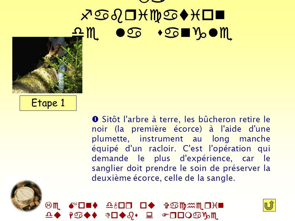 Le Mont d'or ou Vacherin du Haut Doubs : Fromage AOC Etape 1 Etape 2 Etape 3Etape 4 La fabrication de la sangle