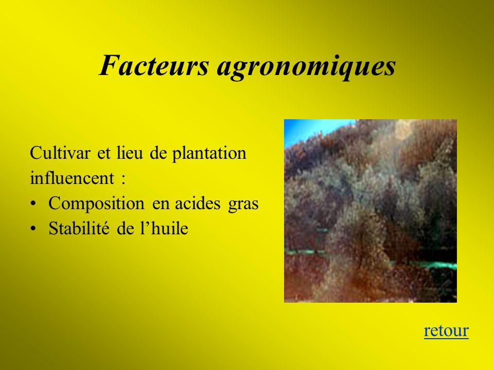 Facteurs agronomiques Cultivar et lieu de plantation influencent : Composition en acides gras Stabilité de lhuile retour