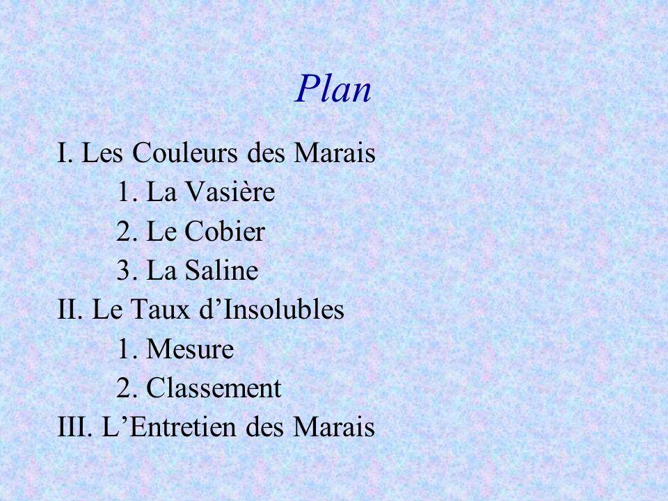 Plan I. Les Couleurs des Marais 1. La Vasière 2. Le Cobier 3. La Saline II. Le Taux dInsolubles 1. Mesure 2. Classement III. LEntretien des Marais