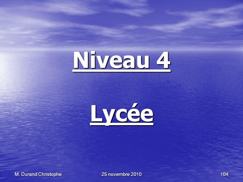 M. Durand Christophe25 novembre 2010104 Niveau 4 Lycée