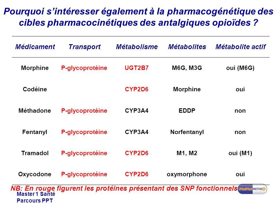 Master 1 Santé Parcours PPT Pourquoi sintéresser également à la pharmacogénétique des cibles pharmacocinétiques des antalgiques opioïdes ? NB: En roug
