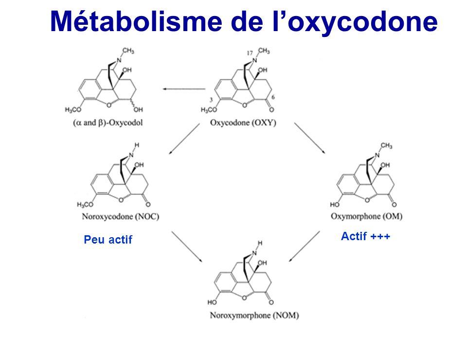 Métabolisme de loxycodone Actif +++ Peu actif