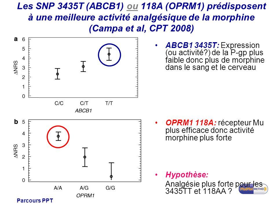 Master 1 Santé Parcours PPT Les SNP 3435T (ABCB1) ou 118A (OPRM1) prédisposent à une meilleure activité analgésique de la morphine (Campa et al, CPT 2008) ABCB1 3435T: Expression (ou activité?) de la P-gp plus faible donc plus de morphine dans le sang et le cerveau OPRM1 118A: récepteur Mu plus efficace donc activité morphine plus forte Hypothèse: Analgésie plus forte pour les 3435TT et 118AA ?