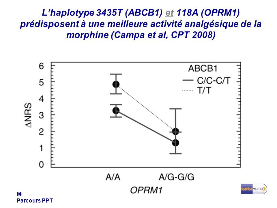 Master 1 Santé Parcours PPT Lhaplotype 3435T (ABCB1) et 118A (OPRM1) prédisposent à une meilleure activité analgésique de la morphine (Campa et al, CP