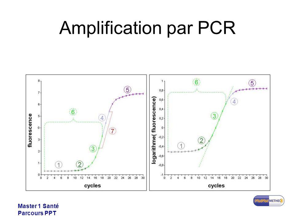 Master 1 Santé Parcours PPT Amplification par PCR