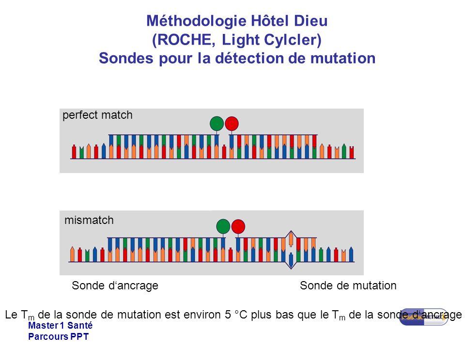 Master 1 Santé Parcours PPT Méthodologie Hôtel Dieu (ROCHE, Light Cylcler) Sondes pour la détection de mutation Sonde dancrageSonde de mutation Le T m