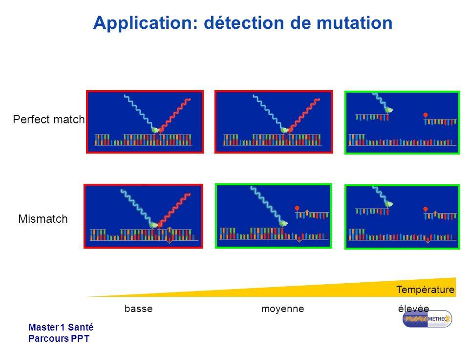 Master 1 Santé Parcours PPT Mismatch Perfect match Température bassemoyenneélevée Application: détection de mutation