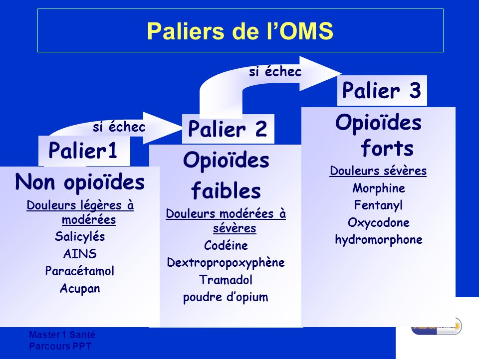 Master 1 Santé Parcours PPT Paliers de lOMS si échec Opioïdes faibles Douleurs modérées à sévères Codéine Dextropropoxyphène Tramadol poudre dopium Pa