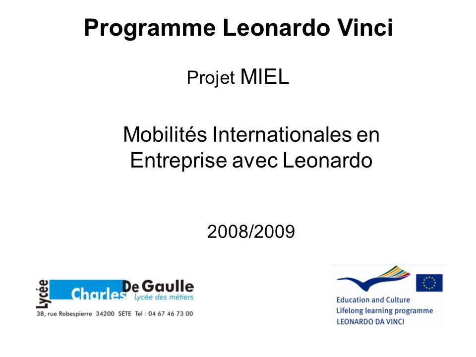 Mobilités Internationales en Entreprise avec Leonardo 2008/2009 Programme Leonardo Vinci Projet MIEL