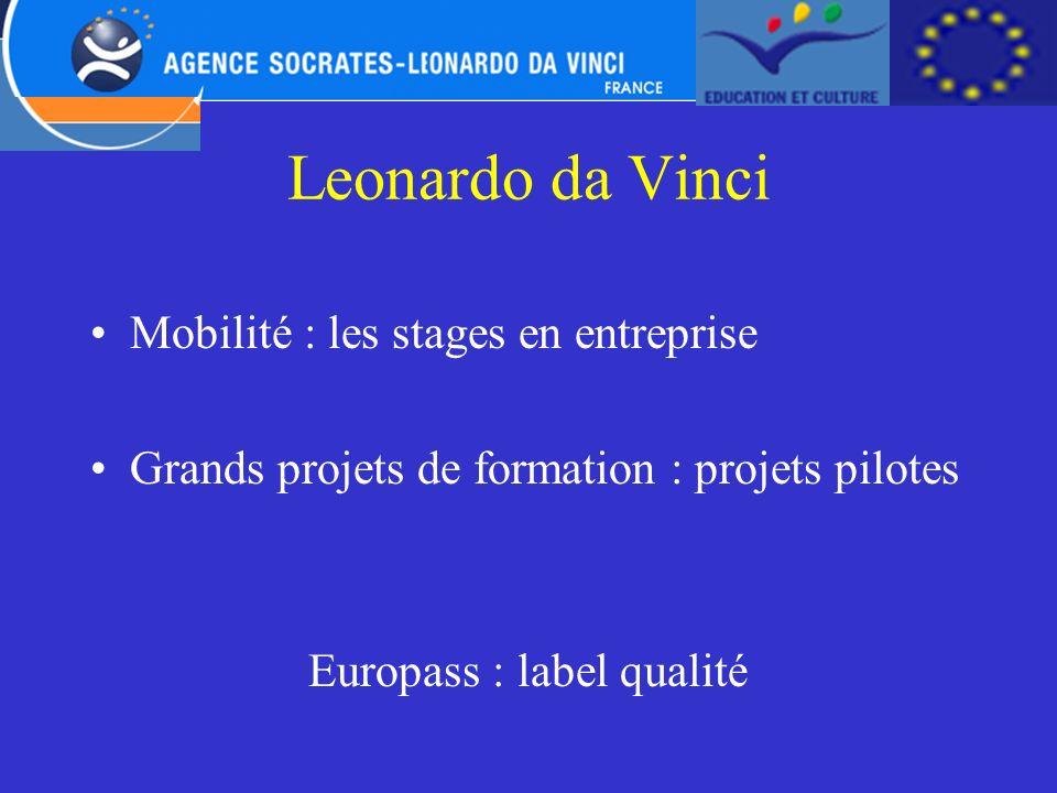 Leonardo da Vinci Mobilité : les stages en entreprise Grands projets de formation : projets pilotes Europass : label qualité