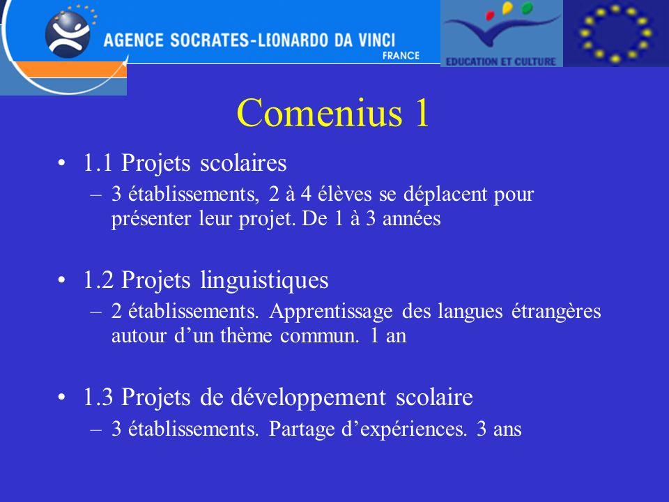 Comenius 1 1.1 Projets scolaires –3 établissements, 2 à 4 élèves se déplacent pour présenter leur projet. De 1 à 3 années 1.2 Projets linguistiques –2