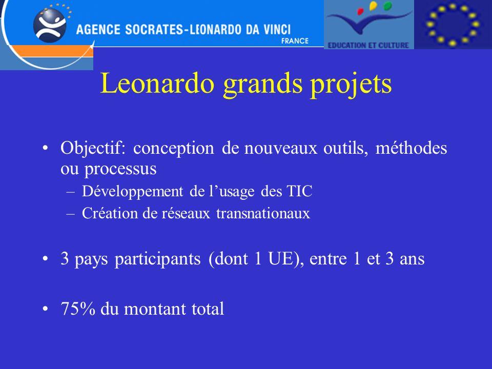 Leonardo grands projets Objectif: conception de nouveaux outils, méthodes ou processus –Développement de lusage des TIC –Création de réseaux transnati