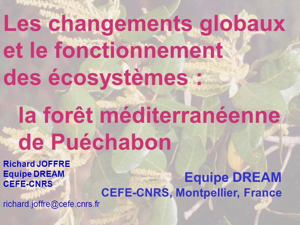 Les changements globaux et le fonctionnement des écosystèmes : la forêt méditerranéenne de Puéchabon Equipe DREAM CEFE-CNRS, Montpellier, France Richa