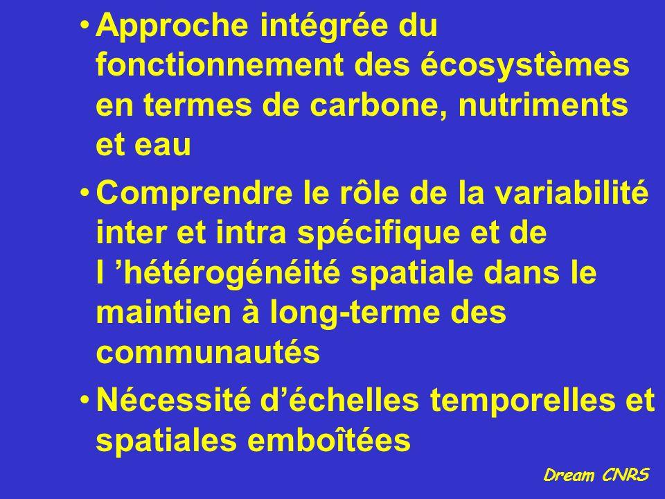 Approche intégrée du fonctionnement des écosystèmes en termes de carbone, nutriments et eau Comprendre le rôle de la variabilité inter et intra spécif