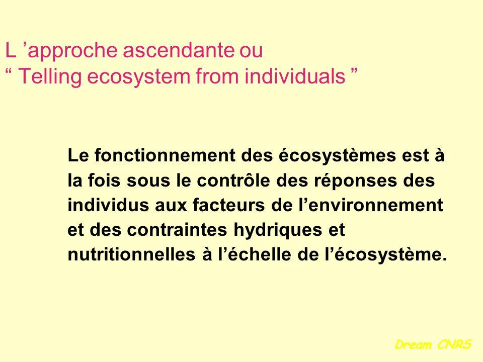 L approche ascendante ou Telling ecosystem from individuals Le fonctionnement des écosystèmes est à la fois sous le contrôle des réponses des individu