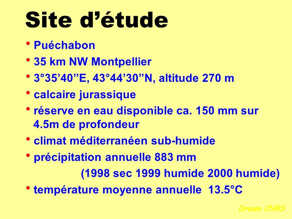 Site détude Puéchabon 35 km NW Montpellier 3°3540E, 43°4430N, altitude 270 m calcaire jurassique réserve en eau disponible ca. 150 mm sur 4.5m de prof