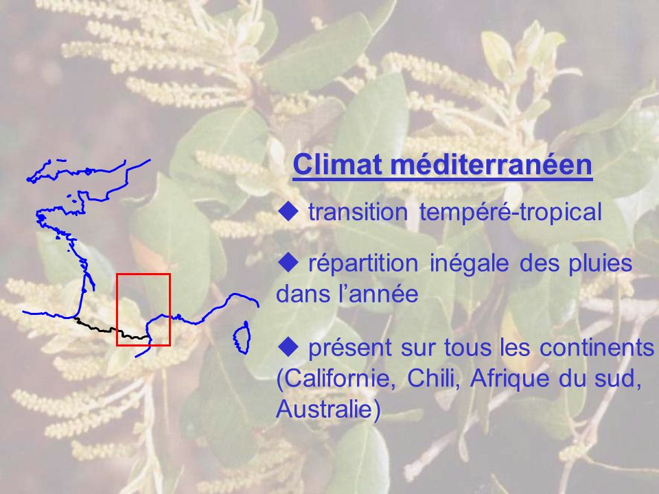 Climat méditerranéen présent sur tous les continents (Californie, Chili, Afrique du sud, Australie) transition tempéré-tropical répartition inégale de