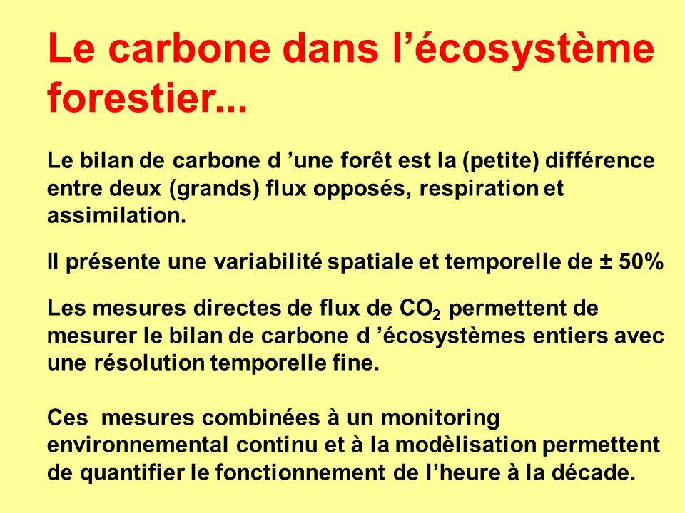 Le bilan de carbone d une forêt est la (petite) différence entre deux (grands) flux opposés, respiration et assimilation. Il présente une variabilité