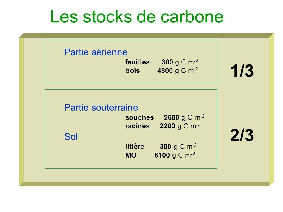 Les stocks de carbone Partie aérienne feuilles 300 g C m -2 bois 4800 g C m -2 Partie souterraine souches 2600 g C m -2 racines 2200 g C m -2 Sol liti