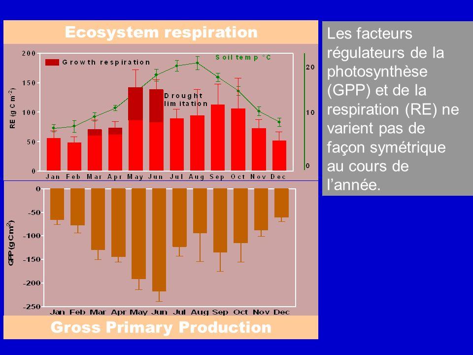 Ecosystem respiration Gross Primary Production Les facteurs régulateurs de la photosynthèse (GPP) et de la respiration (RE) ne varient pas de façon sy