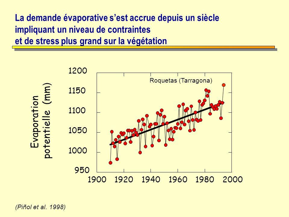 La demande évaporative sest accrue depuis un siècle impliquant un niveau de contraintes et de stress plus grand sur la végétation (Piñol et al. 1998)