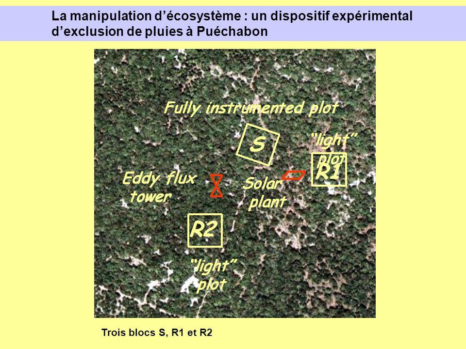 La manipulation décosystème : un dispositif expérimental dexclusion de pluies à Puéchabon Trois blocs S, R1 et R2