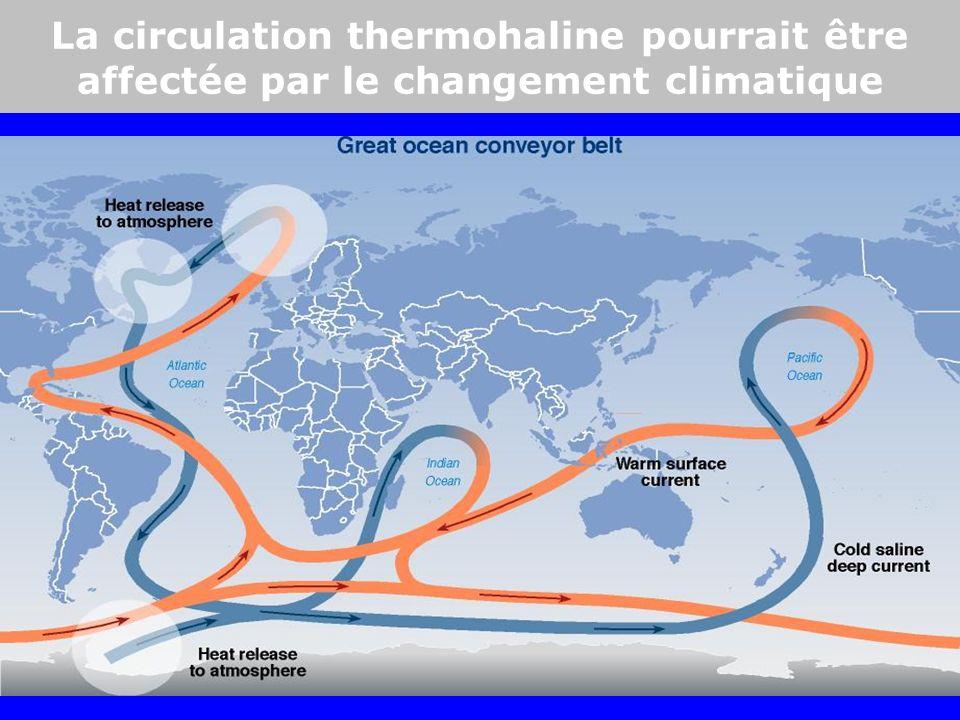 Warm and less salineAntarctic circumpolar current Warm surface current Intermediate waters La circulation thermohaline pourrait être affectée par le changement climatique