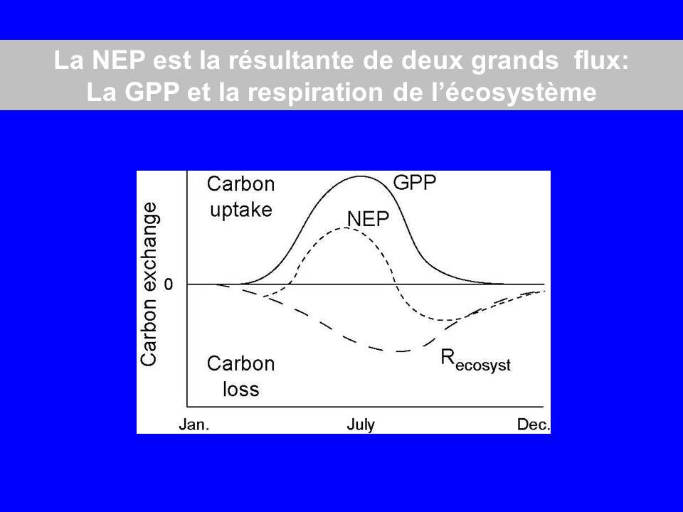 La NEP est la résultante de deux grands flux: La GPP et la respiration de lécosystème