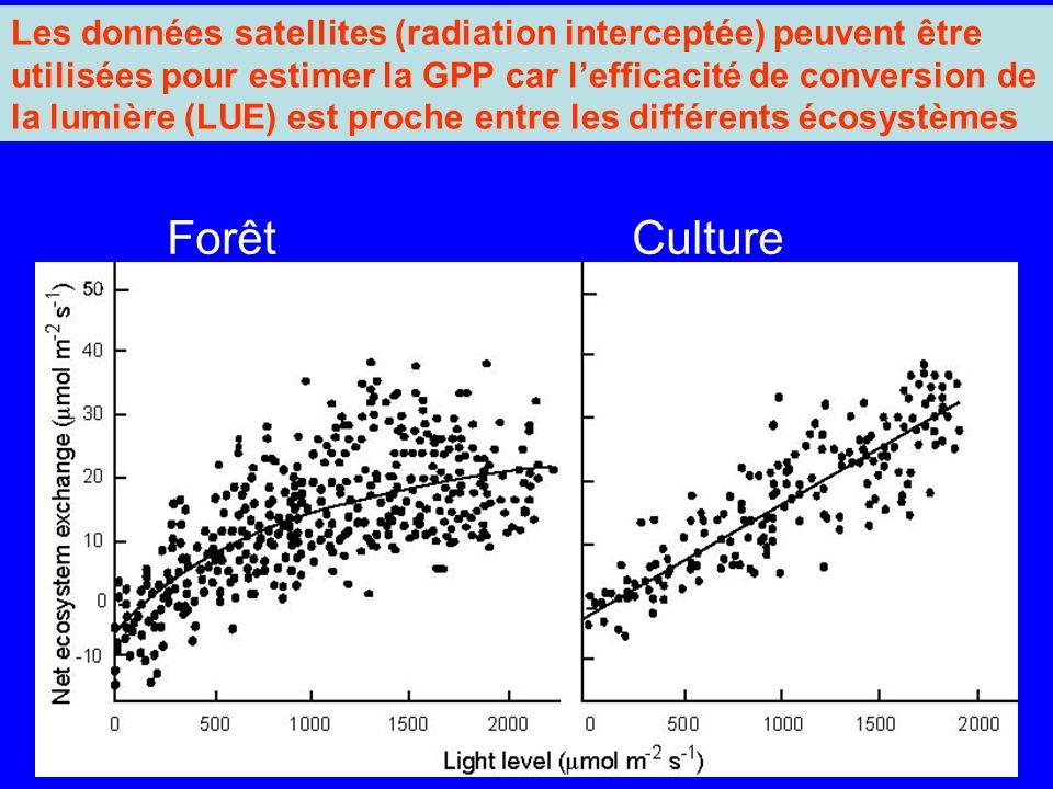 ForêtCulture Les données satellites (radiation interceptée) peuvent être utilisées pour estimer la GPP car lefficacité de conversion de la lumière (LUE) est proche entre les différents écosystèmes