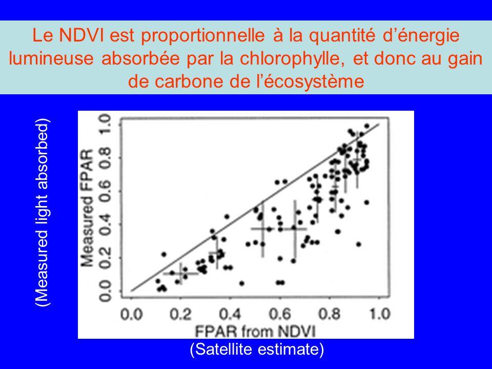 Le NDVI est proportionnelle à la quantité dénergie lumineuse absorbée par la chlorophylle, et donc au gain de carbone de lécosystème (Satellite estimate) (Measured light absorbed)