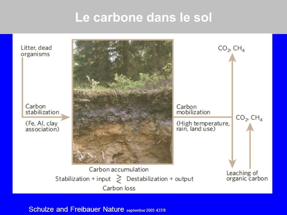 Le carbone dans le sol Schulze and Freibauer Nature september 2005 437/8