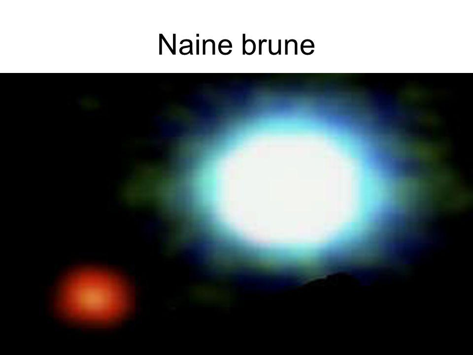 Naine brune