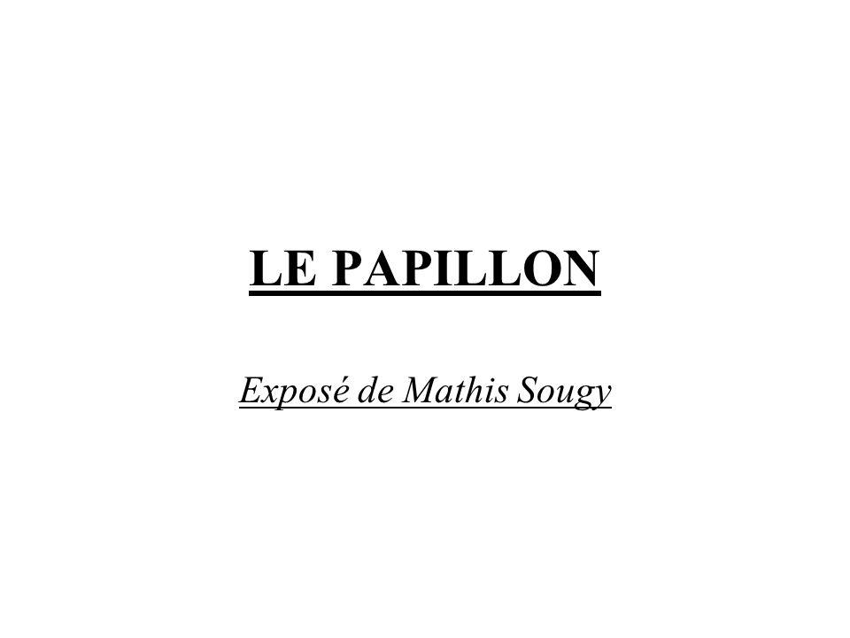 LE PAPILLON Exposé de Mathis Sougy