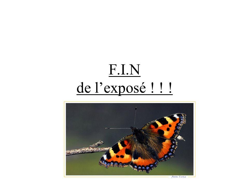 F.I.N de lexposé ! ! !