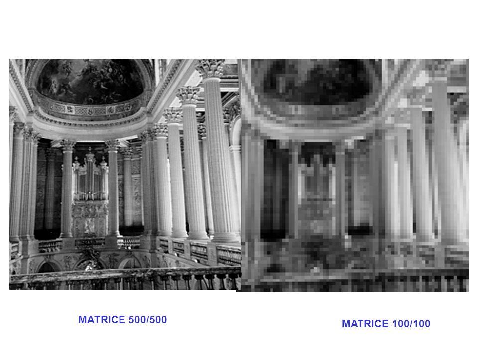 MATRICE 100/100 MATRICE 500/500