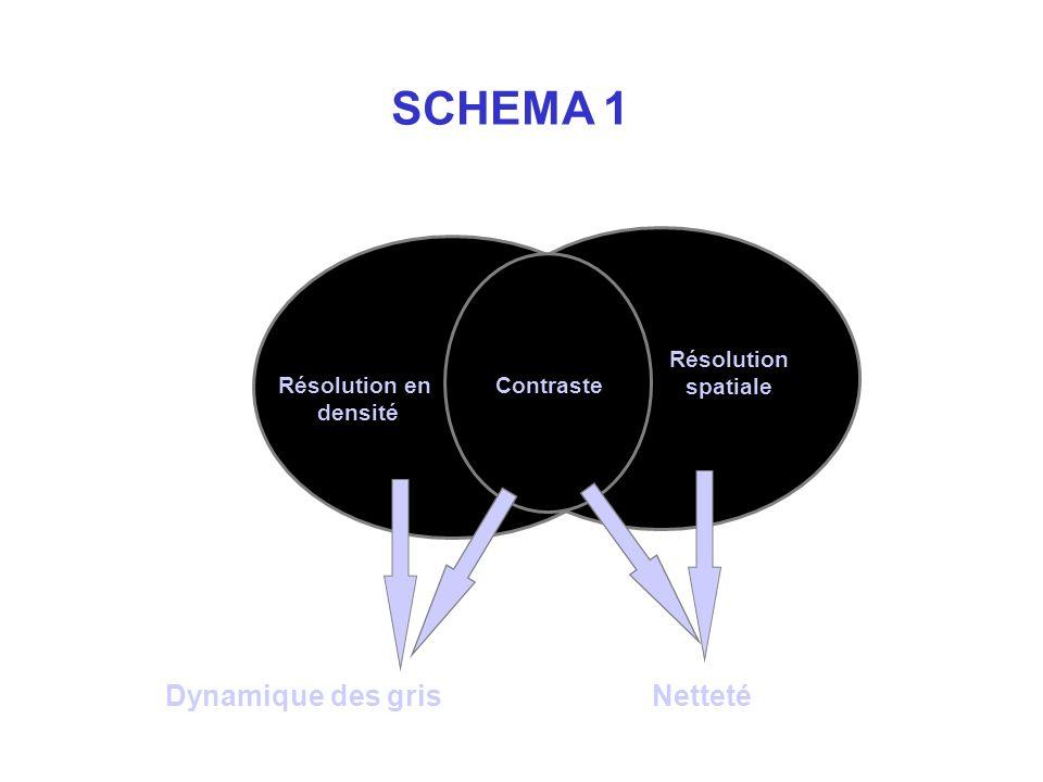 Résolution en densité Résolution spatiale Contraste Dynamique des grisNetteté SCHEMA 1