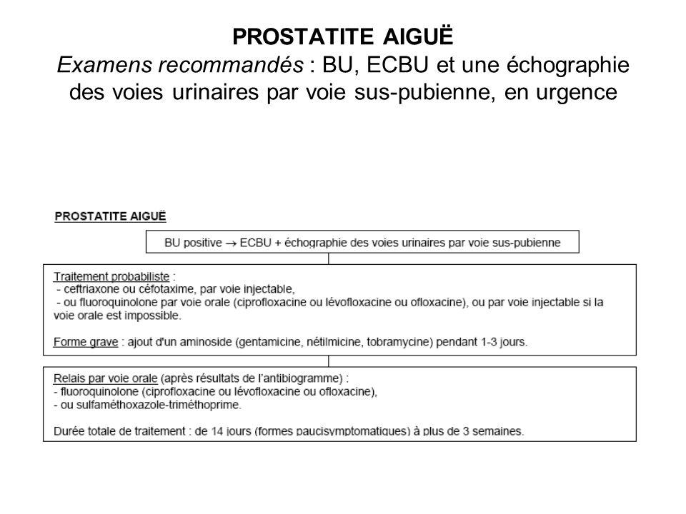 PROSTATITE AIGUË Examens recommandés : BU, ECBU et une échographie des voies urinaires par voie sus-pubienne, en urgence