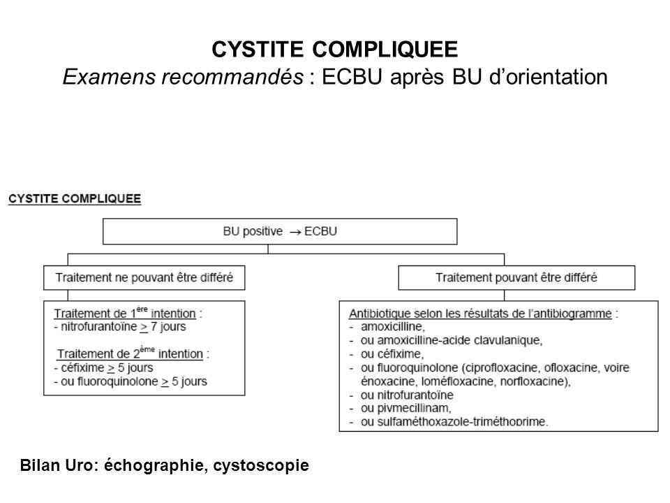 CYSTITE COMPLIQUEE Examens recommandés : ECBU après BU dorientation Bilan Uro: échographie, cystoscopie