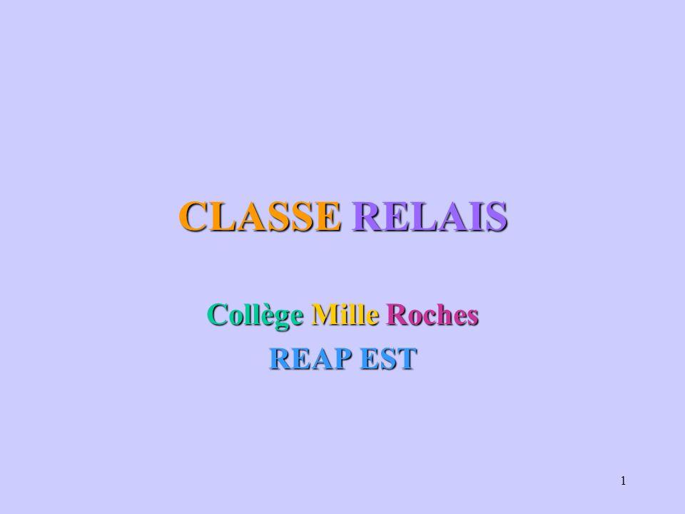 1 CLASSE RELAIS Collège Mille Roches REAP EST