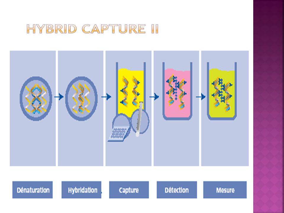 Permet l extraction d ADN Donc typage viral Recherche d autres oncogènes Étude de la surexpression de proto-oncogènes et l altération de gènes suppresseurs de tumeur Étude des polymorphismes de E6 et E7 Étude de la méthylation de l ADN