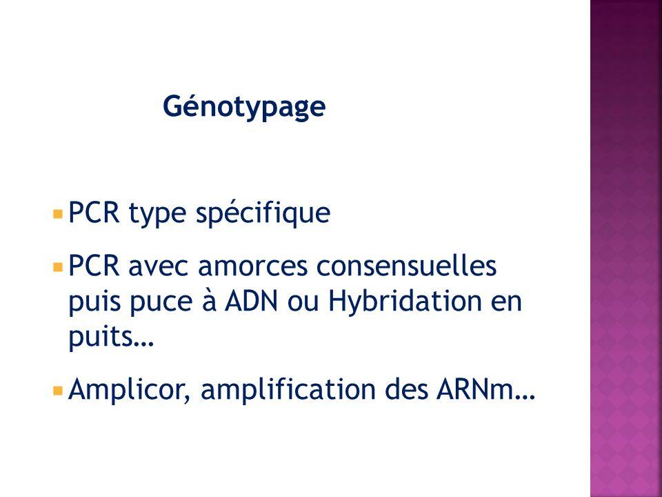 Génotypage PCR type spécifique PCR avec amorces consensuelles puis puce à ADN ou Hybridation en puits… Amplicor, amplification des ARNm…