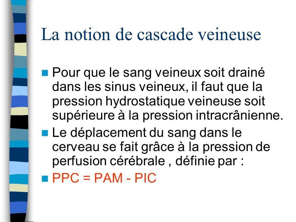 La notion de cascade veineuse Pour que le sang veineux soit drainé dans les sinus veineux, il faut que la pression hydrostatique veineuse soit supérie